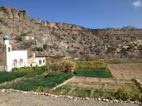 179 Spaziergang an den Terrassengärten (Al Ayn)