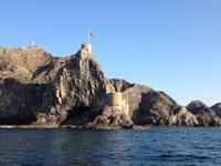 389 Dhau-Schifffahrt entlang der Küste