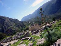 Heiligtum Delphi