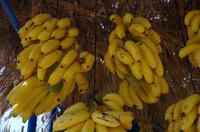 Bananenstand