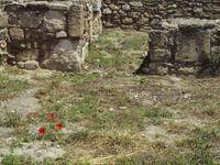 Ruinen der Stadt Kamiros
