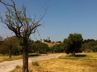 Auf der Akropolis von Rhodos