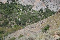 Reisegäste auf Wanderung nach Polirrinia
