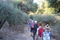 Wanderung von Agios Irini nach Archanes