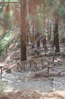 Wanderweg in der Samaria-Schlucht