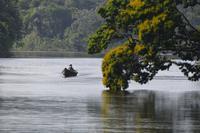 Suriname River (2)