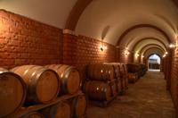 145 Potomje, im Weinkeller von Matusko