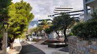 216 Podgora, Hotel Medora Auri