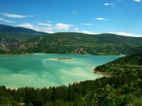 Der Grüne See