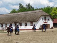 Ausflug Puszta - Besuch im Gestüt