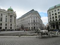 Wien - Fiaker auf dem Michaelerplatz