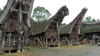 118 Sulawesi - Clanhäuser stwehen sich gegenüber.