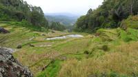 127 Sulawesi - typische Landschaft