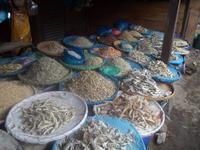 verschiedene Varianten von Trockenfische in Balige
