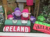 Irland erwartet uns