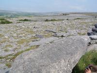 im Burren-Gebiet