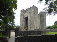 Bunratty Folk Park - Castle
