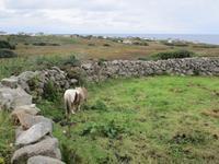 Wild Atlantic Way Donegal