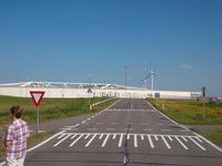 Fluttor an der Maas bei Rotterdam