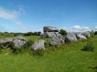 Megalthgrab in Carrowmore