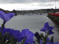 Hafen in Kinsale