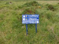 im Killarney Nationalpark
