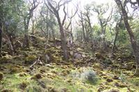 Glenveagh-Nationalpark