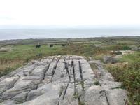 Aran Insel Inishmore 1