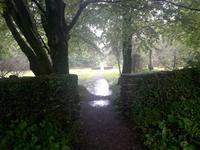 Im Park von Derrynane House