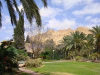 Kibbutz Ein Gedi + Botanischer Garten