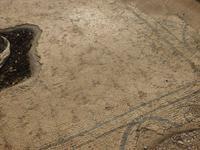 4.Tag, 27.10.2013: Ausgrabungsgelände Bet She´an (byzantinische Mosaiken)