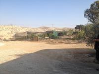 0472 Weinprobe in der Negev-Wüste