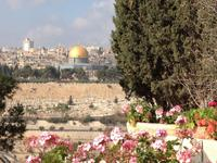 0575 Jerusalem - Felsendom von Dominus Flevit