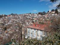 Shimla ist direkt an die Himalaya-Hänge gebaut