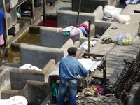 Indien, Mumbai, Großwäscherei