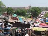 Viehmarkt Delhi