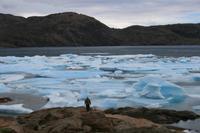 Eisformationen im Kong Oscars Havn in Tasiilaq