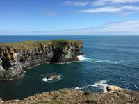 13.06.2016: Wanderung oberhalb der Steilküste bei Arnarstapi