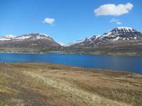 Panoramafahrt entlang der Ostfjorde