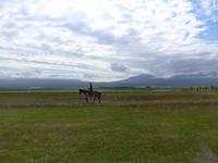 Island, Pferdehof