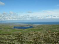 776 Island - Fahrt  zum Gletscher Vatnajökull - Blick zum Meer