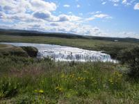 Isländische Wildniss