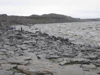 Der Fluss Jökulsa bevor er beim Dettifoss hinabstürzt