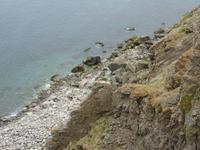 Steilküste am Vogelfelsen