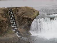 Unser 1. Wasserfall mit Lachstreppe