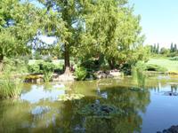 101.07.2017 Parco Sigurta