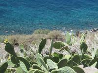 Insel Salina (15)