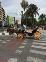 Malaga innerstädtischer Transport