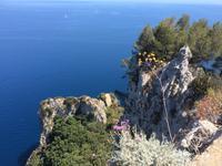 Traumhafte Ausblicke auf Capri