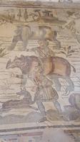 Mosaike Villa Romana